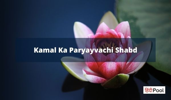 Kamal Ka Paryayvachi Shabd | Synonyms of Lotus (कमल) in Hindi
