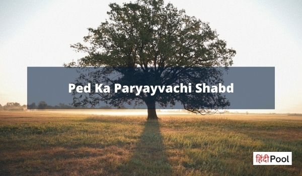 Ped Ka Paryayvachi Shabd | Synonyms of Tree (पेड़) in Hindi